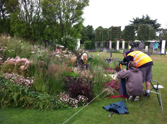 hampton court flower show filming packages 2013